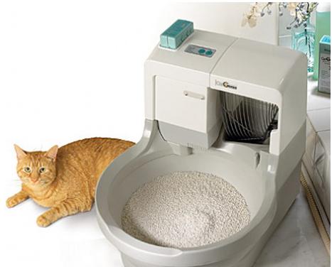 скрупулезной как сделать чтобы лоток кота не вонял цены, выберите лучшее